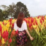 around the world in cebu