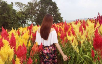 These Stunning Spots In Cebu Will Take You To Different Parts Of The World