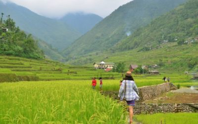 Hungduan Rice Terraces Day Trip Guide for First-Timers